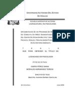 Implemantacion Programa Ninos Autistas