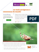 As 11 Aranhas Mais Perigosas e Venenosas Do Mundo