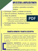 Conceptos y Unidades Morfologicas