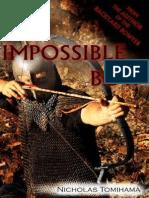 O Arco Impossível