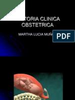 Historia Clinica Obstetrica 2013