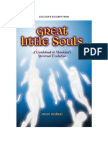 Great Little Souls - A guidebook for the evolution of mankind