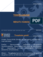 Toxaplasmose