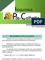 Bioquímica Pós Colheita