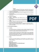 Fases Informe Diagrama Pb Sn