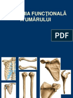 Umar Anatomie Cu Note