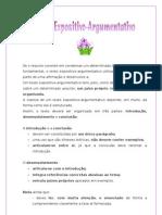 Texto Expositivo-Argumentativo FInf
