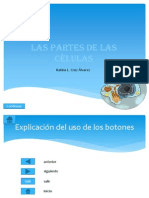 examen de power point