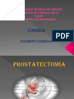 prostatectoma-130419094630-phpapp02