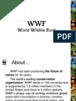 WWF org. SAI
