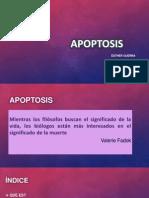 Expo Apoptosis