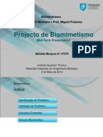 Project Biomimetismo