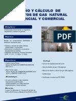 Curso-Diseño y Calculo Gas Natural-g33k1r1zlzrw95z1