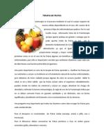 Ensayo de Terapia de Frutas