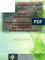 Morfologiayreproduccion Hongosdiapo 120325210442 Phpapp01