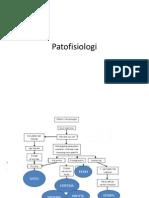 Patofisiologi Dermatitis Kontak Iritan