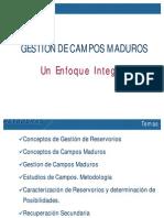 1.Gestión de Campos Maduros