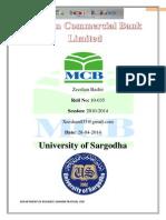 MCB Internship Report of Hafizabad.. Xeeshan Bashir