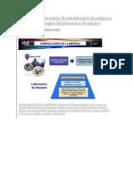 Elaboración de Matriz de Identificación de Peligros y Evaluación de Riesgos