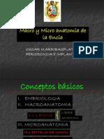 clase1encia-100723112621-phpapp01