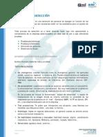 Pruebas de seleccion.pdf