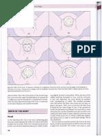 Llewellyn-Jones Fundamentals of Obstetrics and Gynecology Part-2