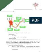 Fiziologie - Curs 5 Neuronul + Miocardul