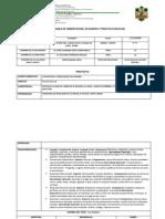 Formato de Proyecto y Agenda de Trabajo Sheila.