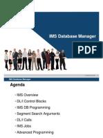 IMS Database Manager