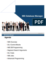 IMS Database Manager