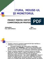 Copy of Tastatura, Mouse-ul Şi Monitorul