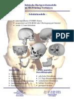 8-2 PB 3D Schädelmodelle Dt