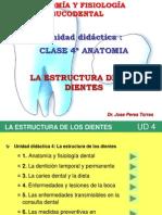 4º a - Clase Anatomia Estructura de Los Dientes Undac Cepicisa