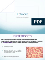 Eritrocito y Metabolismo Del Hierro