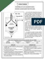 Reactor Anaeróbico de Flujo Ascendente