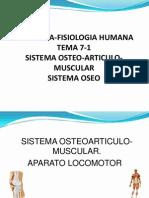 7 1 Sistema Osteoarticulo Muscular Oseo