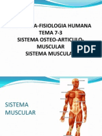 7 3 Sistema Osteoarticulo Muscular Musculo