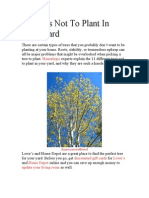 11 Trees Not to Plant in Your Yard