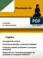 Proiect Managementul productiei