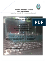 Diagnostico Institucional Pineda Gomez