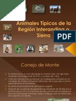 Animal Est Pi Cos Del a Sierra