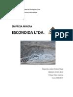 Empresa Minera Escondida.docx