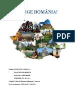 Alege Romania
