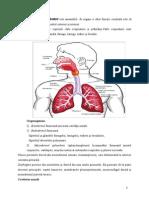 Referat La Anatomie