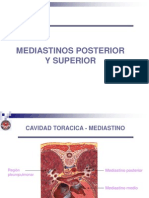 Mediastinos Posterior-superior 2