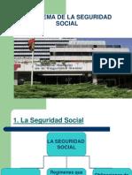 El Sistema de La Seguridad Social-diapositivas