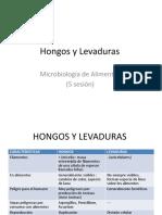 Hongos y Levaduras