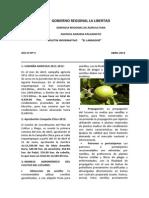 Boletin El Labrador_2_2012_avance de Campaña_cultivo de Lucuo_forestación