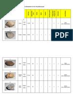 Asg- Batuan (Data Pemerhatian)