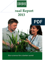 IRRI Annual Report 2013